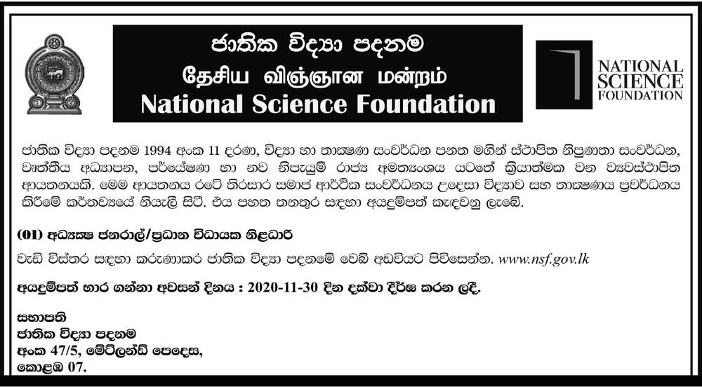 Director General / CEO - National Science Foundation